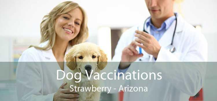 Dog Vaccinations Strawberry - Arizona