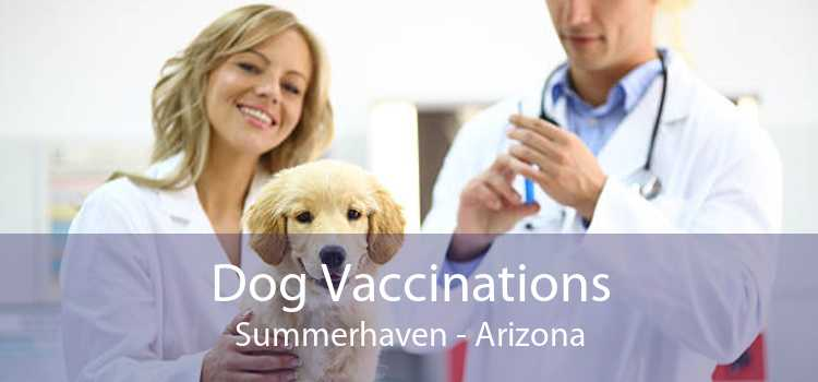 Dog Vaccinations Summerhaven - Arizona