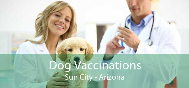 Dog Vaccinations Sun City - Arizona