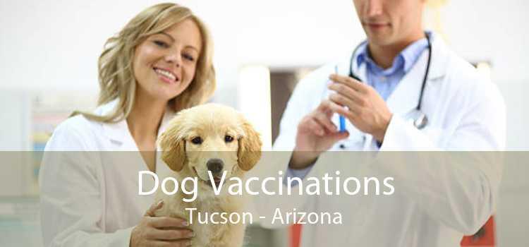 Dog Vaccinations Tucson - Arizona