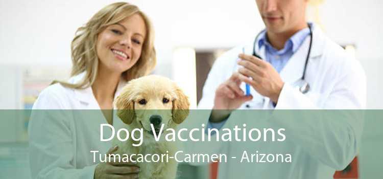Dog Vaccinations Tumacacori-Carmen - Arizona