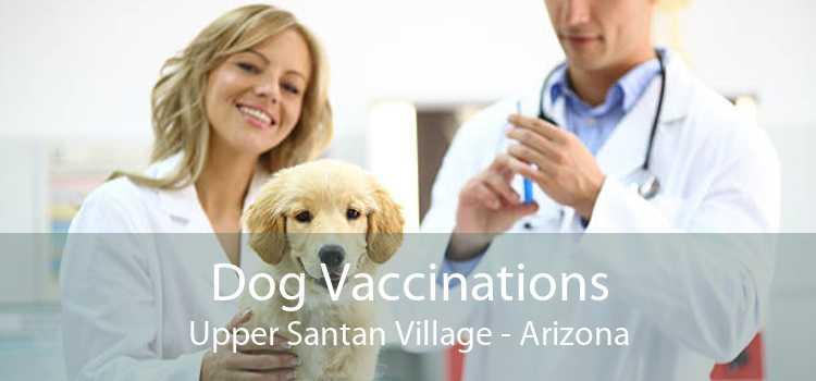 Dog Vaccinations Upper Santan Village - Arizona