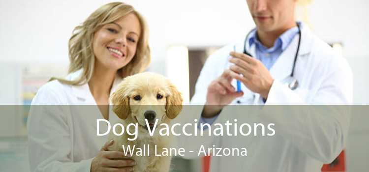 Dog Vaccinations Wall Lane - Arizona