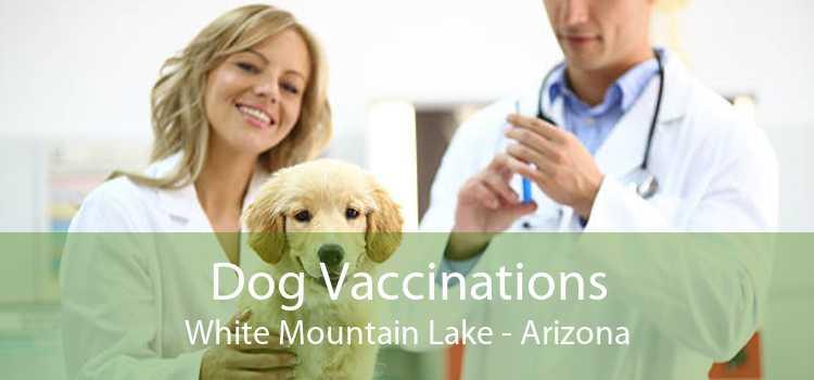 Dog Vaccinations White Mountain Lake - Arizona