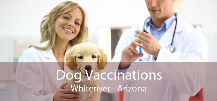 Dog Vaccinations Whiteriver - Arizona