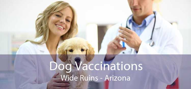 Dog Vaccinations Wide Ruins - Arizona