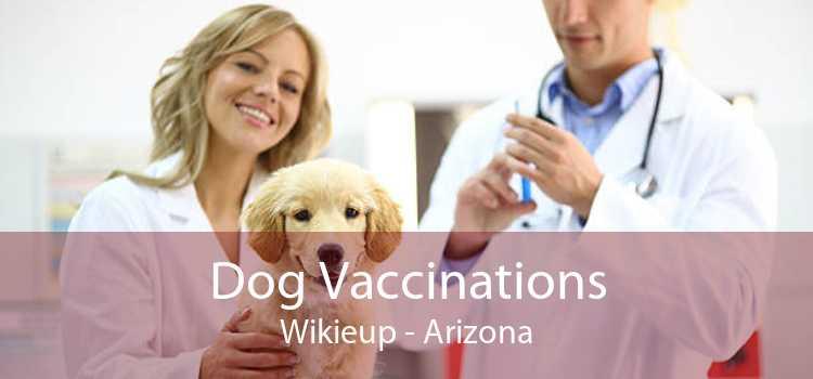 Dog Vaccinations Wikieup - Arizona