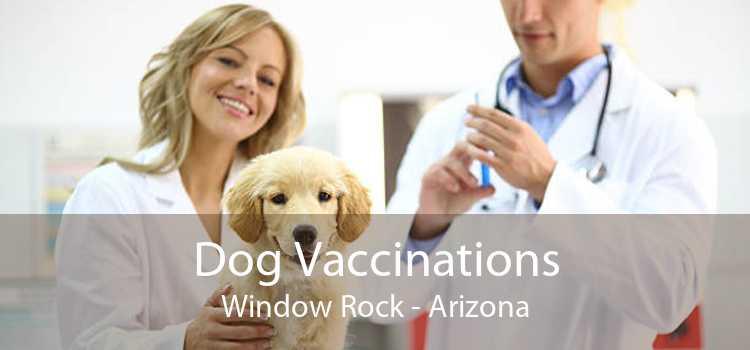 Dog Vaccinations Window Rock - Arizona