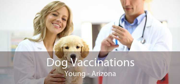 Dog Vaccinations Young - Arizona