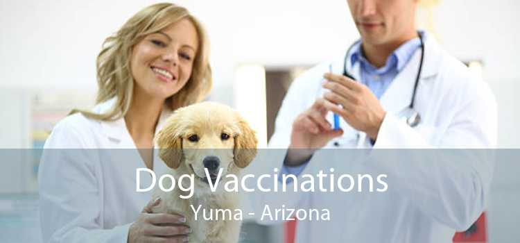 Dog Vaccinations Yuma - Arizona