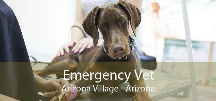 Emergency Vet Arizona Village - Arizona