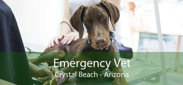 Emergency Vet Crystal Beach - Arizona