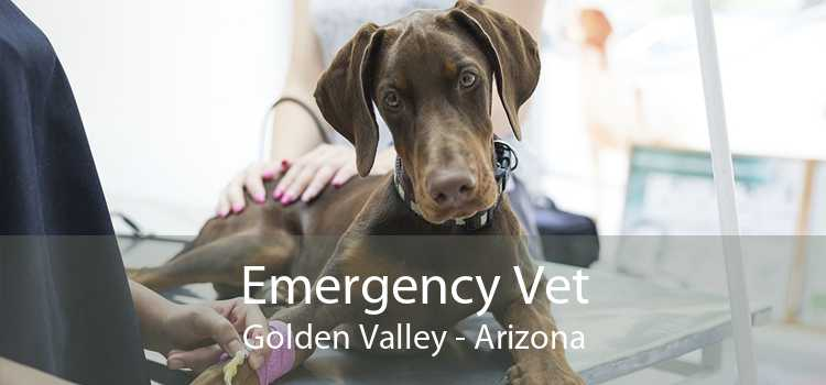 Emergency Vet Golden Valley - Arizona