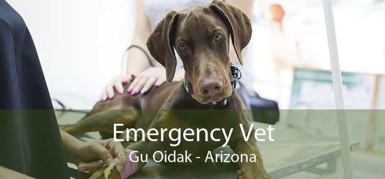 Emergency Vet Gu Oidak - Arizona