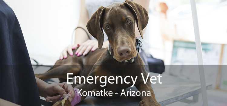 Emergency Vet Komatke - Arizona