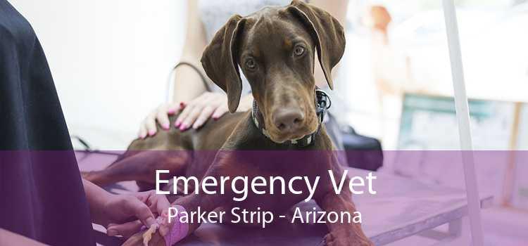 Emergency Vet Parker Strip - Arizona