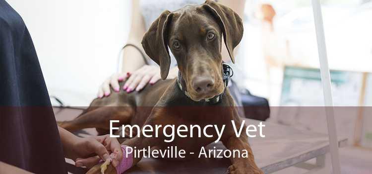 Emergency Vet Pirtleville - Arizona