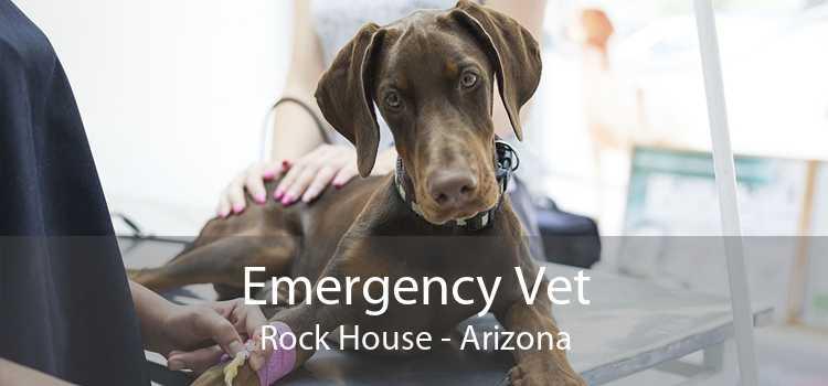 Emergency Vet Rock House - Arizona