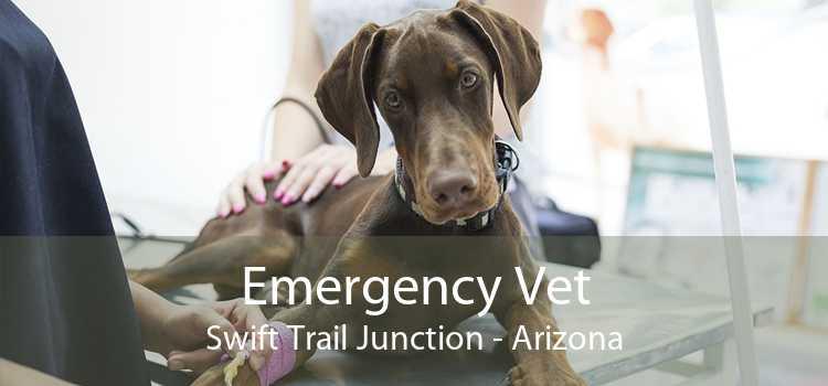 Emergency Vet Swift Trail Junction - Arizona