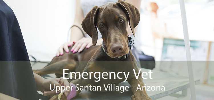 Emergency Vet Upper Santan Village - Arizona