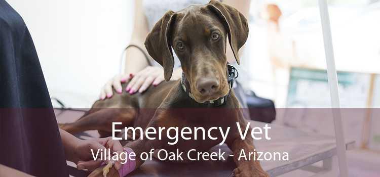 Emergency Vet Village of Oak Creek - Arizona
