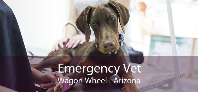 Emergency Vet Wagon Wheel - Arizona