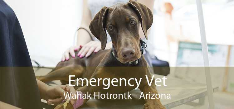 Emergency Vet Wahak Hotrontk - Arizona