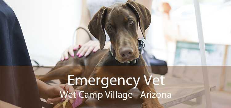Emergency Vet Wet Camp Village - Arizona