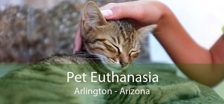 Pet Euthanasia Arlington - Arizona