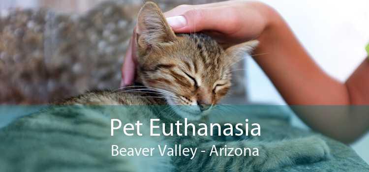 Pet Euthanasia Beaver Valley - Arizona