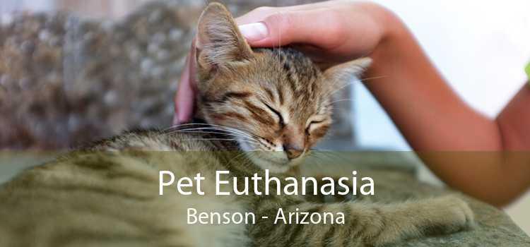 Pet Euthanasia Benson - Arizona