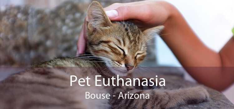 Pet Euthanasia Bouse - Arizona
