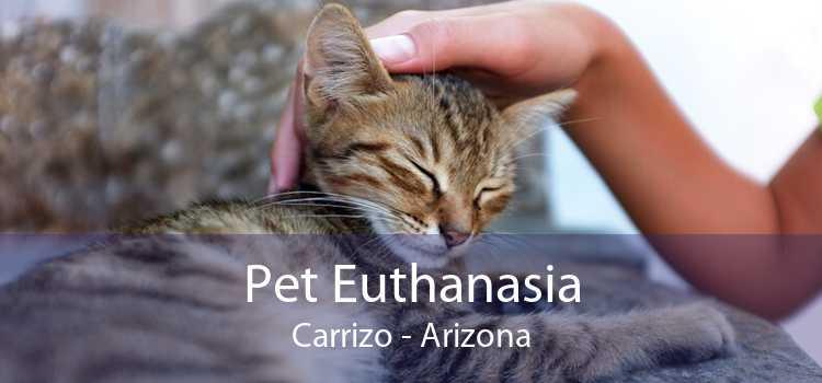 Pet Euthanasia Carrizo - Arizona