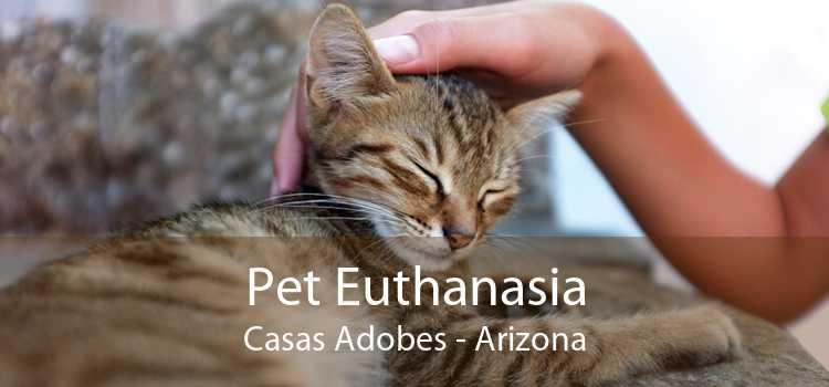Pet Euthanasia Casas Adobes - Arizona