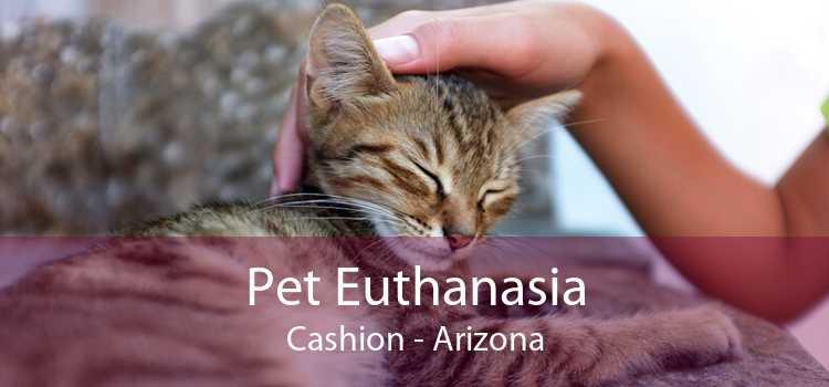 Pet Euthanasia Cashion - Arizona