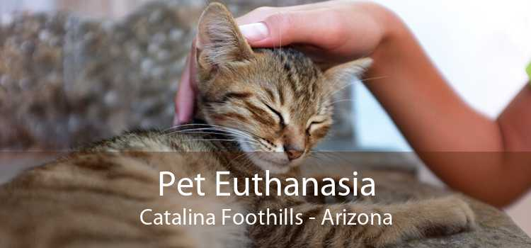 Pet Euthanasia Catalina Foothills - Arizona