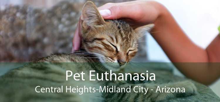 Pet Euthanasia Central Heights-Midland City - Arizona