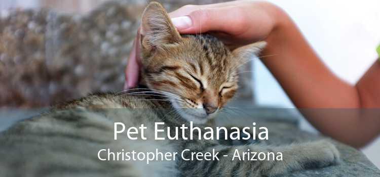 Pet Euthanasia Christopher Creek - Arizona