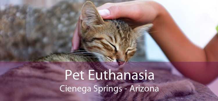 Pet Euthanasia Cienega Springs - Arizona