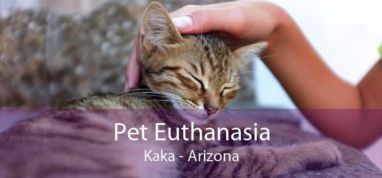 Pet Euthanasia Kaka - Arizona