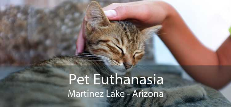 Pet Euthanasia Martinez Lake - Arizona
