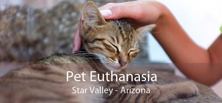 Pet Euthanasia Star Valley - Arizona