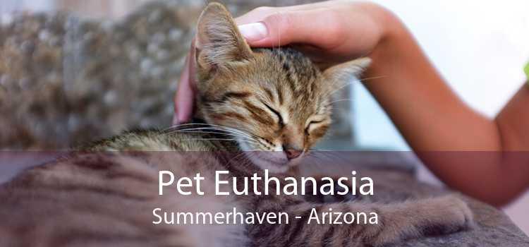 Pet Euthanasia Summerhaven - Arizona