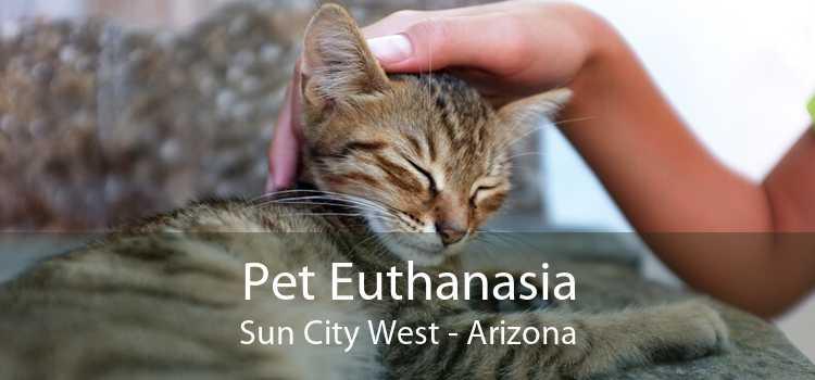 Pet Euthanasia Sun City West - Arizona