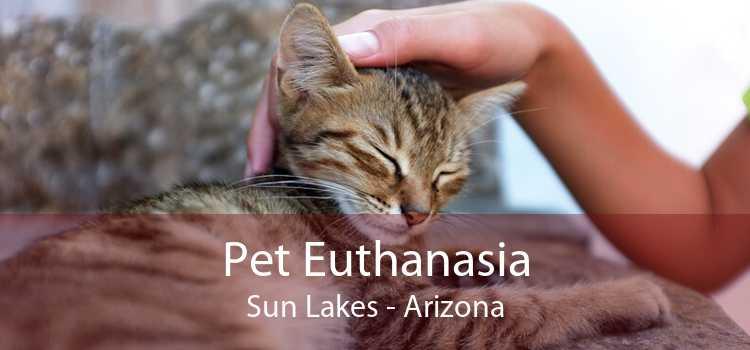 Pet Euthanasia Sun Lakes - Arizona