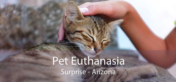 Pet Euthanasia Surprise - Arizona