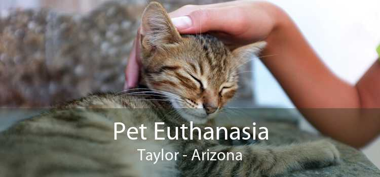 Pet Euthanasia Taylor - Arizona