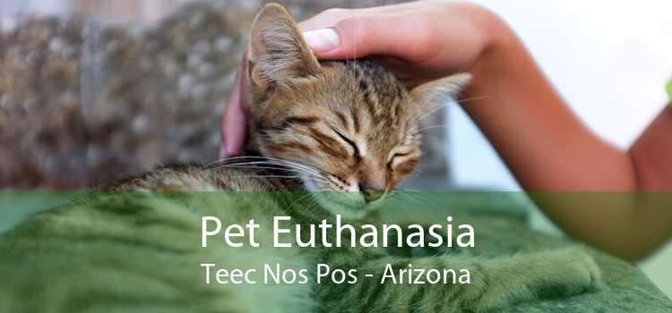 Pet Euthanasia Teec Nos Pos - Arizona