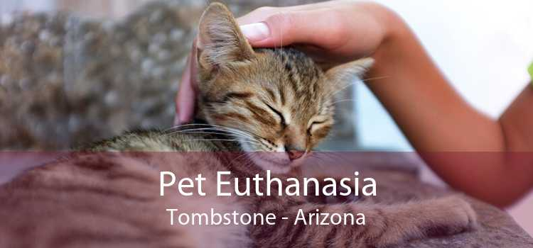 Pet Euthanasia Tombstone - Arizona