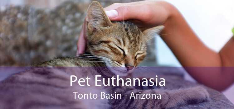 Pet Euthanasia Tonto Basin - Arizona